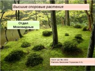 ГБОУ ЦО № 1602 Учитель биологии Глушкова Н.Б. Высшие споровые растения Отдел