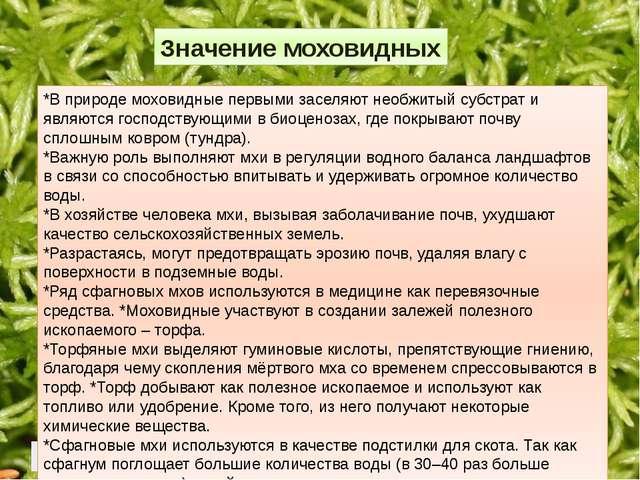 *В природе моховидные первыми заселяют необжитый субстрат и являются господ...