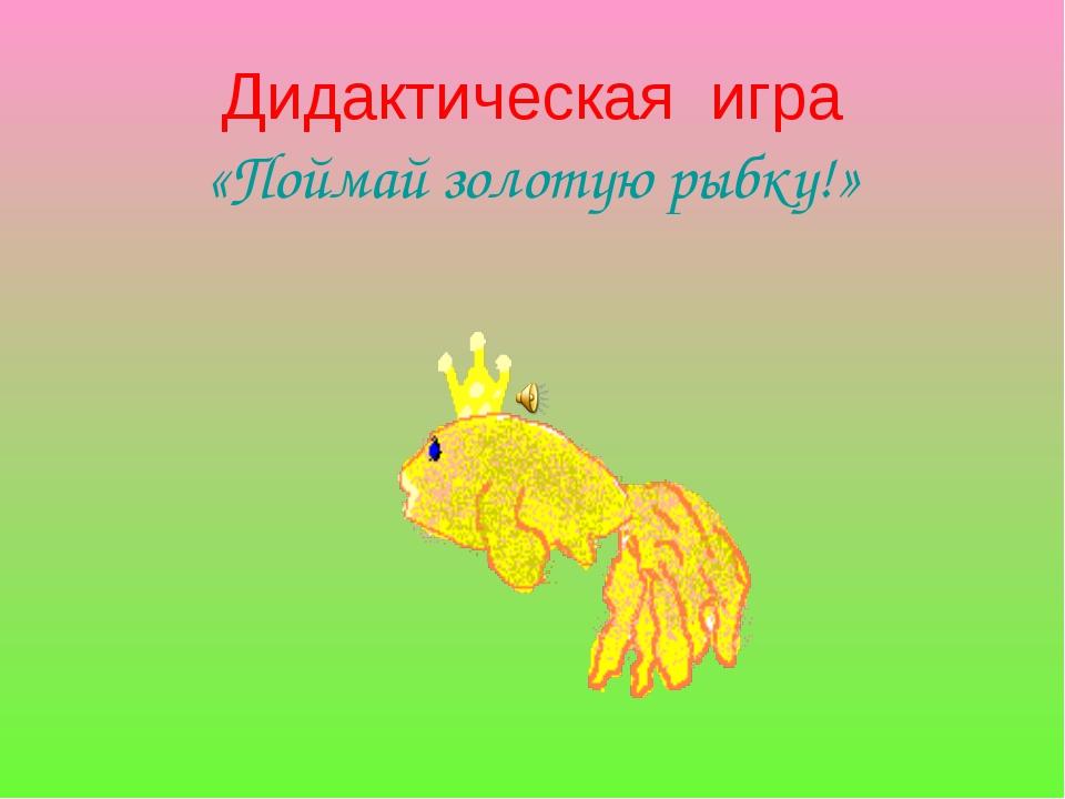 Дидактическая игра «Поймай золотую рыбку!»
