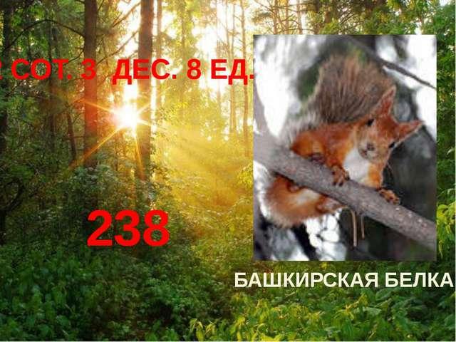 БАШКИРСКАЯ БЕЛКА 2 СОТ. 3 ДЕС. 8 ЕД. 238