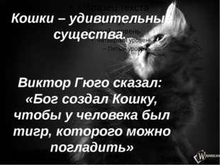 Кошки – удивительные существа. Виктор Гюго сказал: «Бог создал Кошку, чтобы у