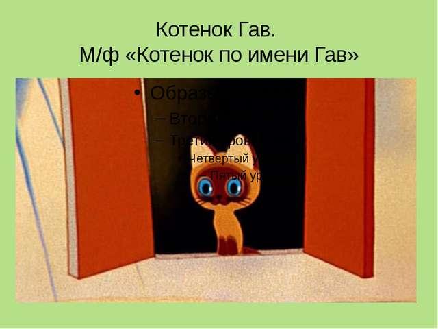 Котенок Гав. М/ф «Котенок по имени Гав»