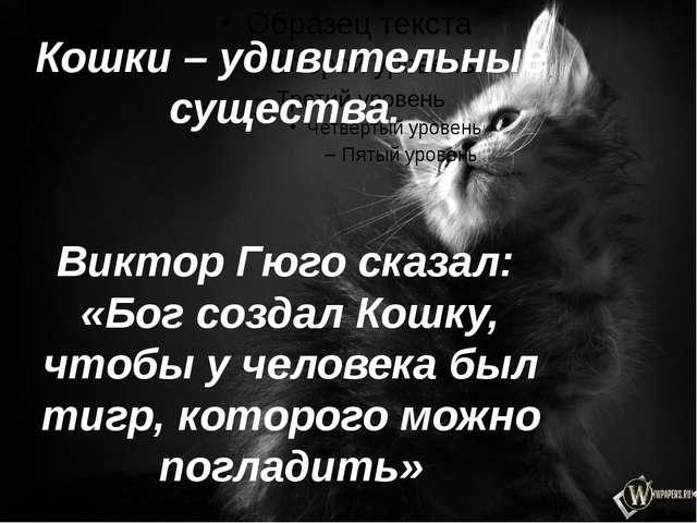 Кошки – удивительные существа. Виктор Гюго сказал: «Бог создал Кошку, чтобы у...
