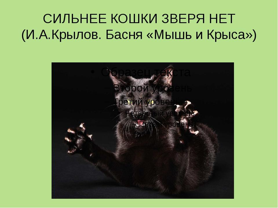 СИЛЬНЕЕ КОШКИ ЗВЕРЯ НЕТ (И.А.Крылов. Басня «Мышь и Крыса»)