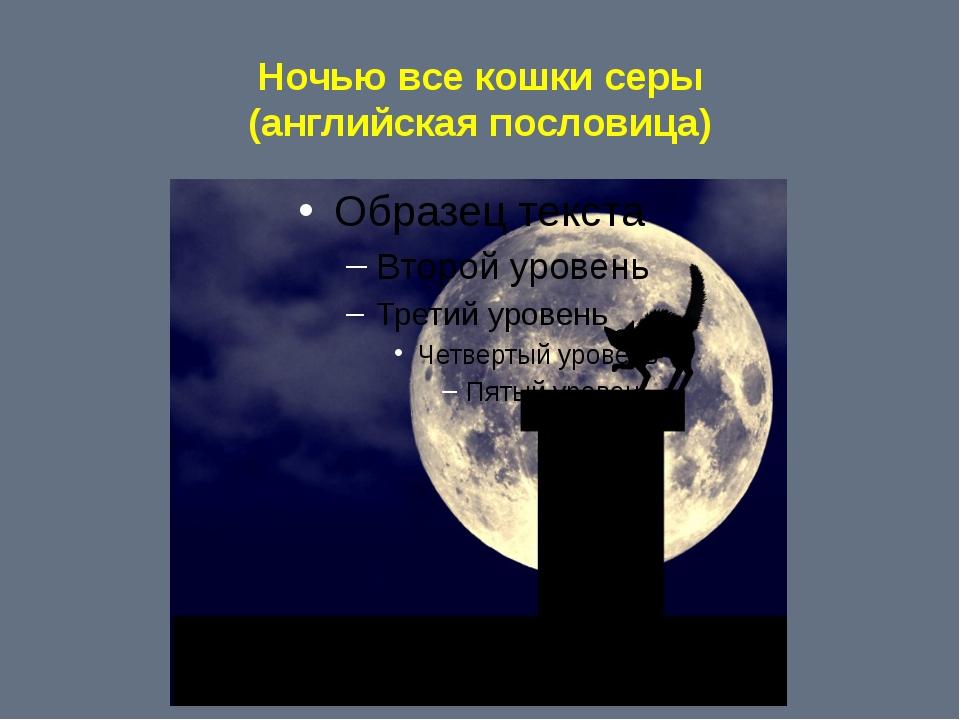 Ночью все кошки серы (английская пословица)