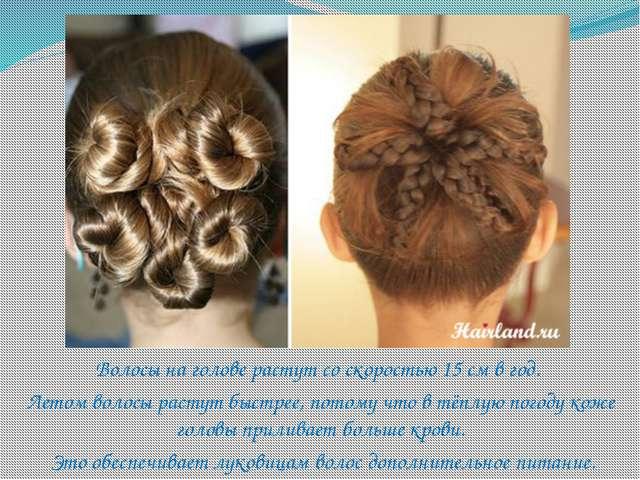 Волосы на голове растут со скоростью 15 см в год. Летом волосы растут быстрее...