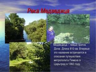 Река Медведица Медведица – левый приток Дона. Длина 810 км. Впервые это назва