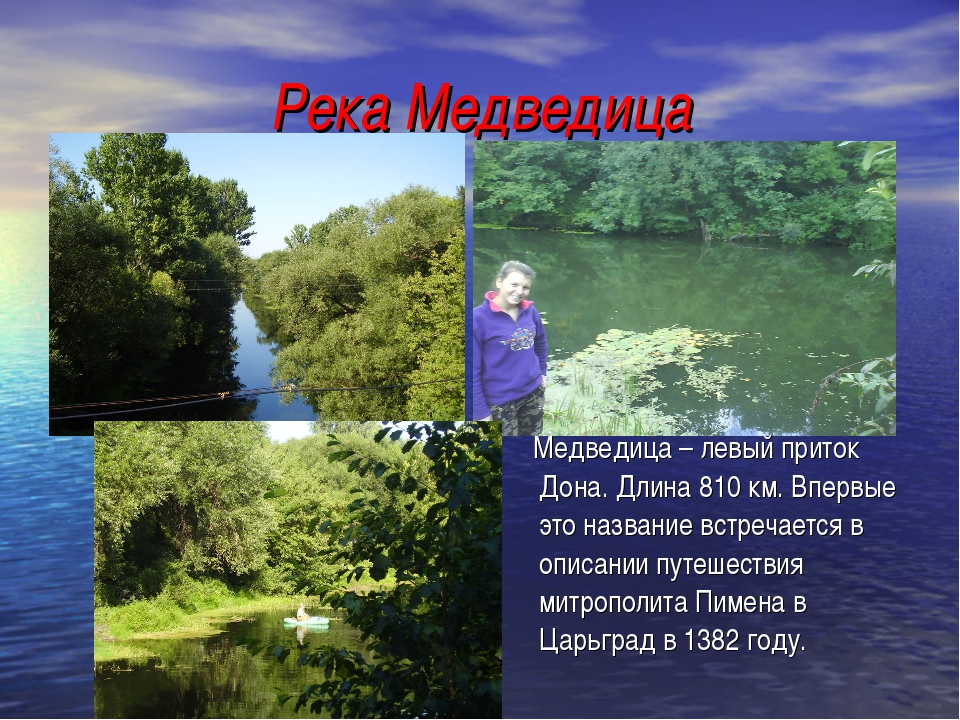 Река Медведица Медведица – левый приток Дона. Длина 810 км. Впервые это назва...