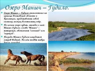 Озеро Маныч – Гудило. Озеро Маныч – Гудило расположено на границе Ростовской