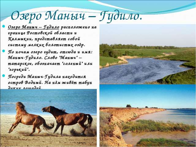 Озеро Маныч – Гудило. Озеро Маныч – Гудило расположено на границе Ростовской...