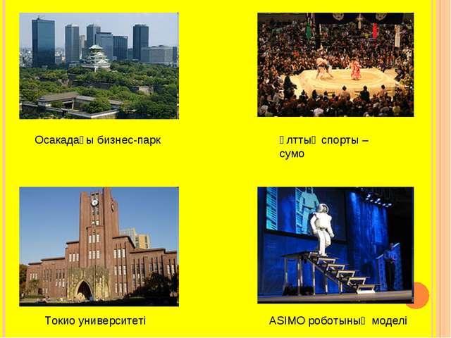 Осакадағы бизнес-парк Ұлттық спорты – сумо Токио университеті ASIMO роботының...