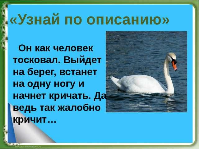 «Узнай по описанию» Он как человек тосковал. Выйдет на берег, встанет на одну...
