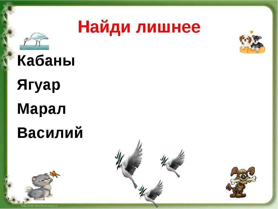Найди лишнее Кабаны Ягуар Марал Василий