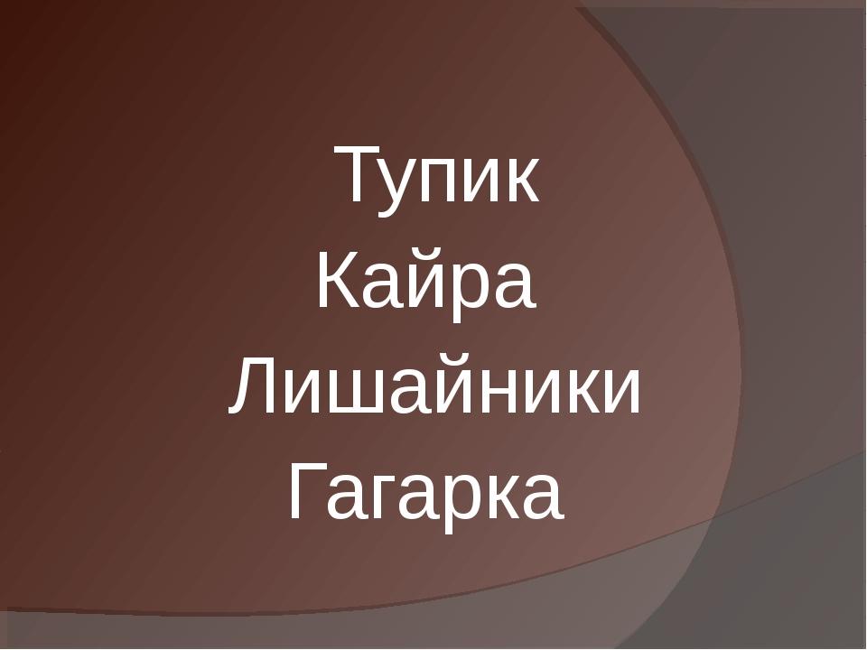 Тупик Кайра Лишайники Гагарка
