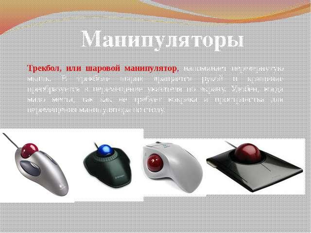 Манипуляторы Трекбол, или шаровой манипулятор, напоминает перевернутую мышь....