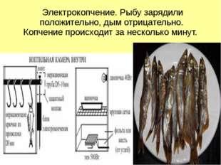 Электрокопчение. Рыбу зарядили положительно, дым отрицательно. Копчение прои