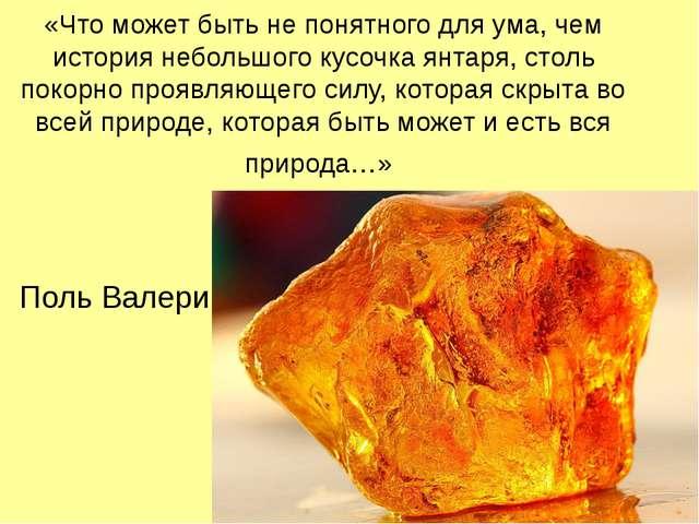 «Что может быть не понятного для ума, чем история небольшого кусочка янтаря,...