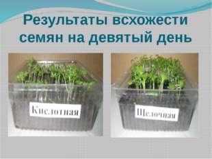 Результаты всхожести семян на девятый день