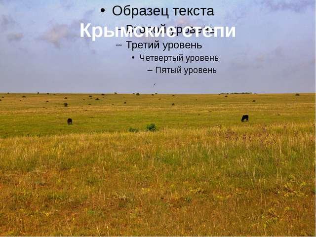 Крымские степи