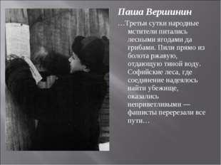 Паша Вершинин …Третьи сутки народные мстители питались лесными ягодами да гри