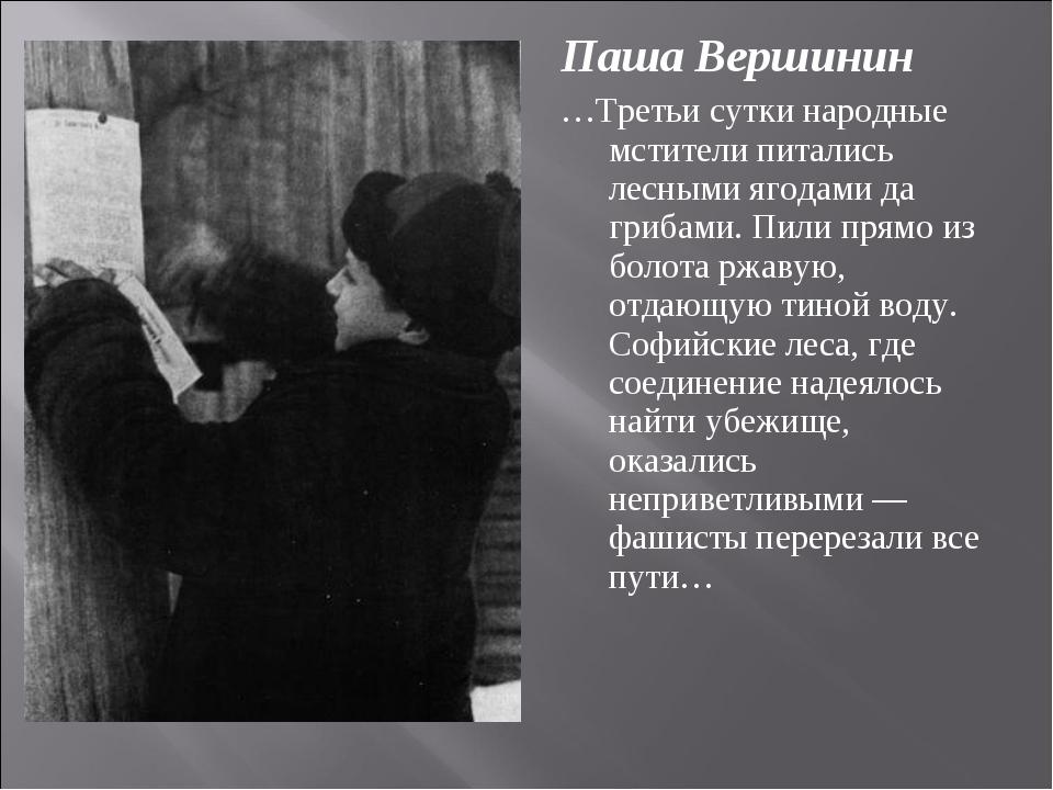 Паша Вершинин …Третьи сутки народные мстители питались лесными ягодами да гри...