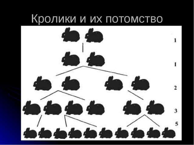 Кролики и их потомство