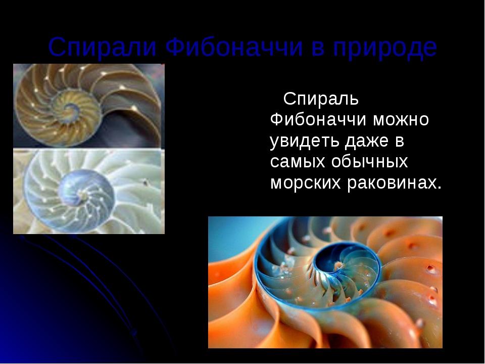 Спирали Фибоначчи в природе Спираль Фибоначчи можно увидеть даже в самых обыч...