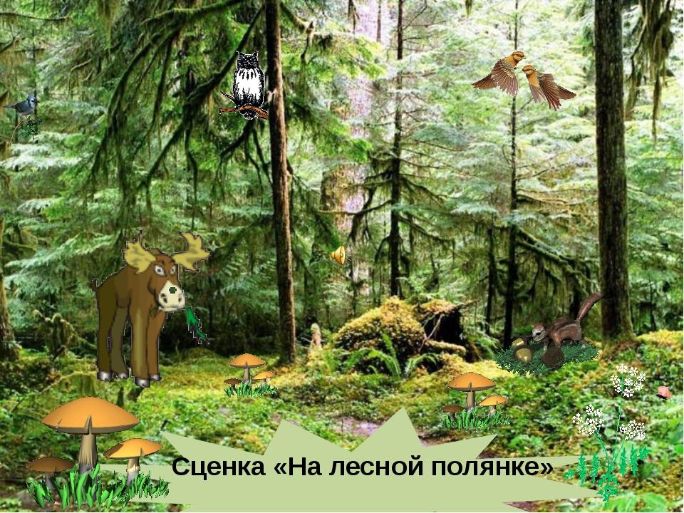 Сценка «На лесной полянке»