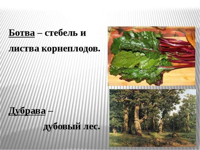 Ботва – стебель и листва корнеплодов. Дубрава – дубовый лес.