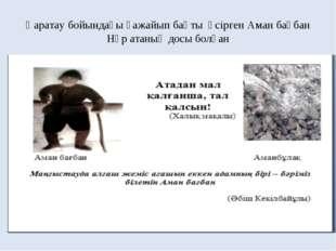 Қаратау бойындағы ғажайып бақты өсірген Аман бағбан Нұр атаның досы болған