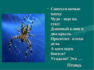 Сниться ночью пауку Чудо - юдо на суку: Длинный клюв и два крыла. Прилетит
