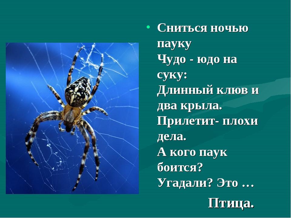 Сниться ночью пауку Чудо - юдо на суку: Длинный клюв и два крыла. Прилетит...