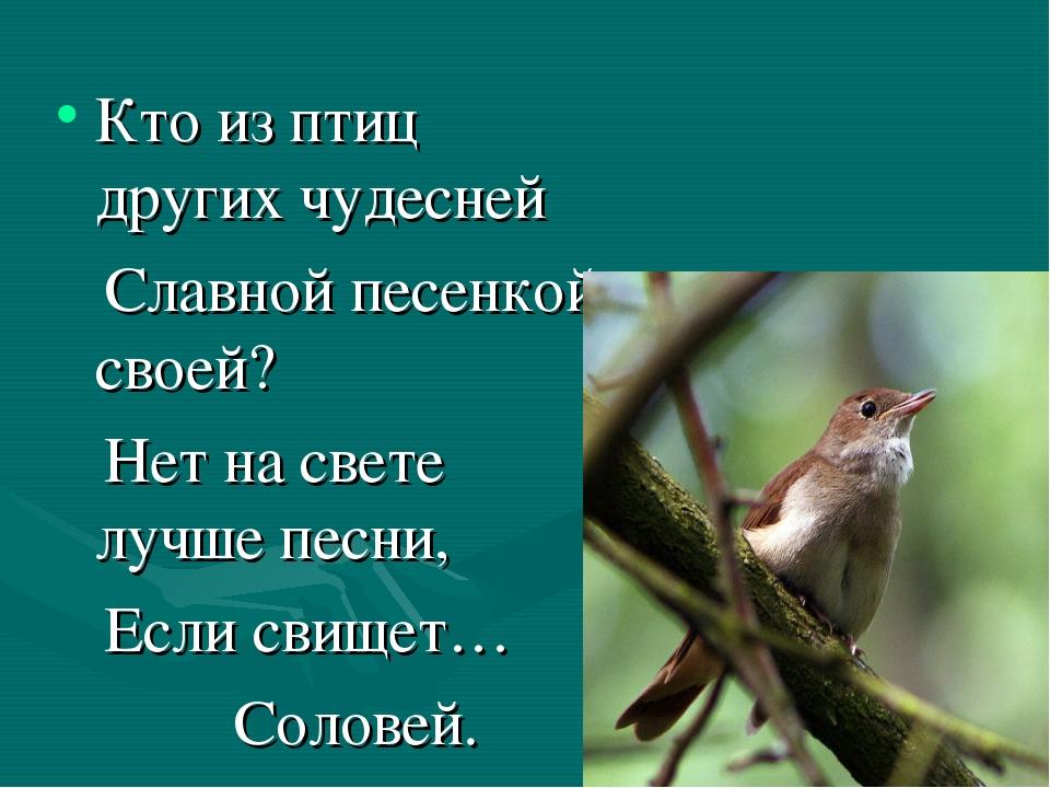 Кто из птиц других чудесней Славной песенкой своей? Нет на свете лучше песни,...