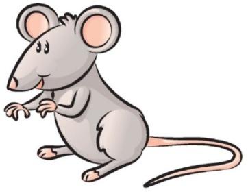 Как нарисовать кота с мышкой Сайт о рисовании