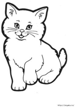 Siamese Cat Tattoos Page Tattoo