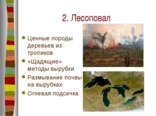 2. Лесоповал Ценные породы деревьев из тропиков «Щадящие» методы вырубки Разм