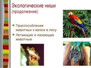 Экологические ниши (продолжение) Приспособление животных к жизни в лесу Летаю