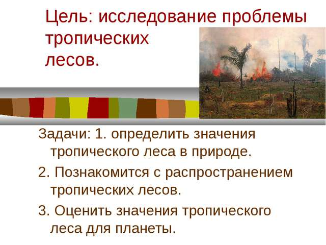 Цель: исследование проблемы тропических лесов. Задачи: 1. определить значения...