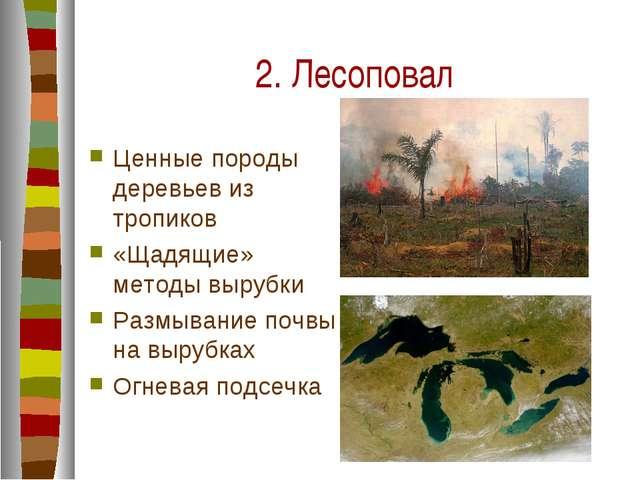 2. Лесоповал Ценные породы деревьев из тропиков «Щадящие» методы вырубки Разм...