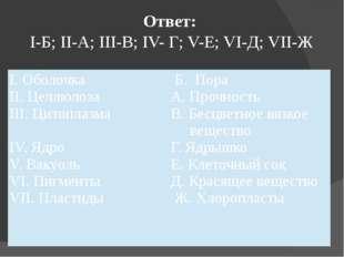 Ответ: I-Б; II-А; III-В; IV- Г; V-Е; VI-Д; VII-Ж I. Оболочка II. Целлюлоза II