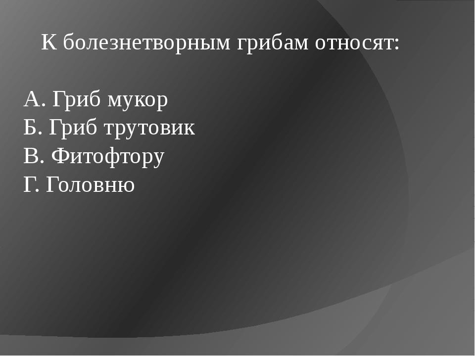 К болезнетворным грибам относят: А. Гриб мукор Б. Гриб трутовик В. Фитофтору...