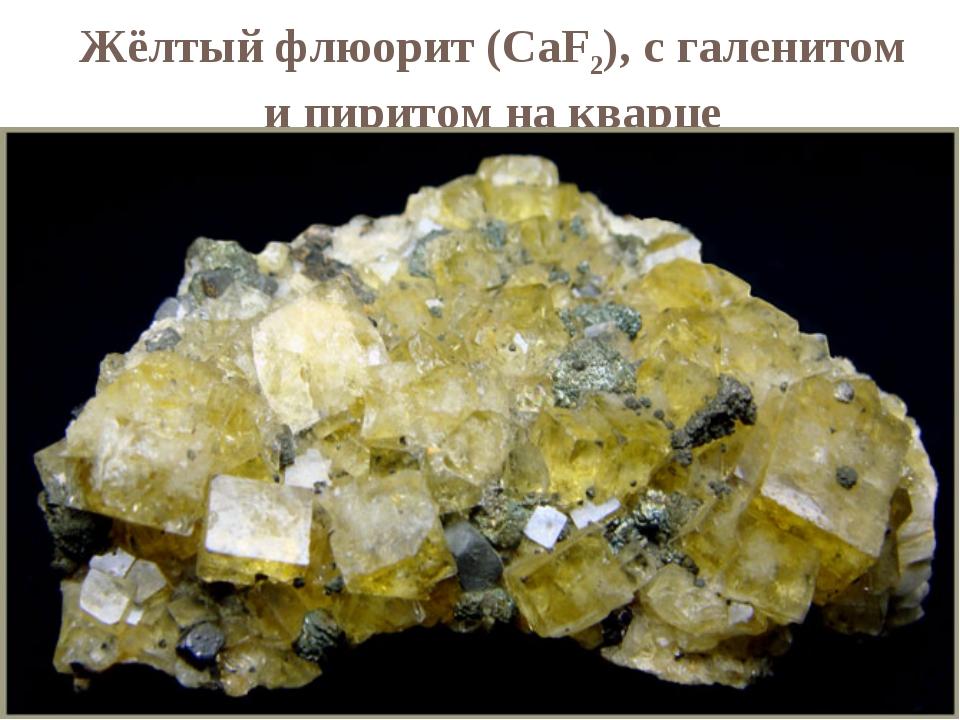 Жёлтый флюорит (CaF2), с галенитом и пиритом на кварце