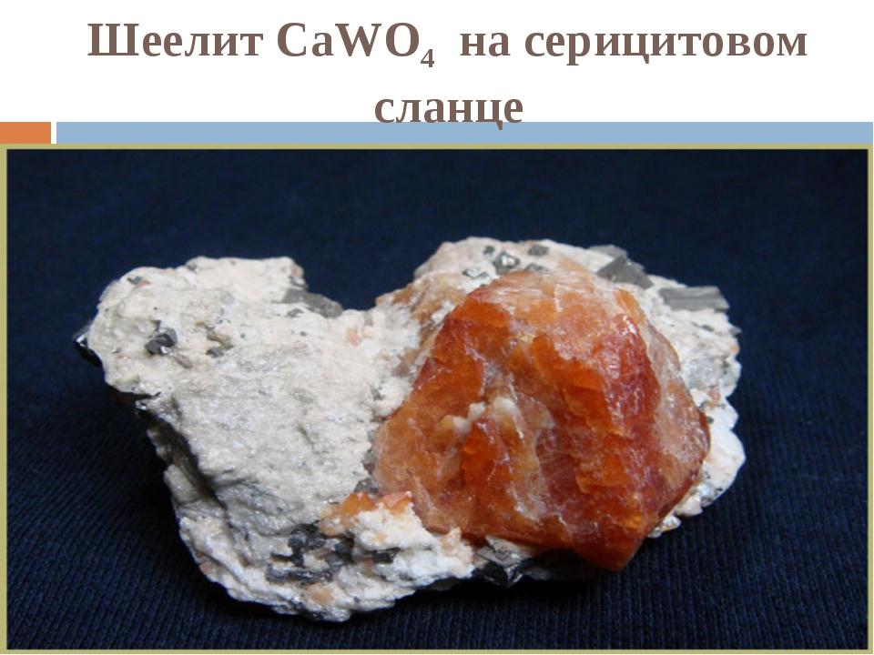 Шеелит CaWO4 на серицитовом сланце