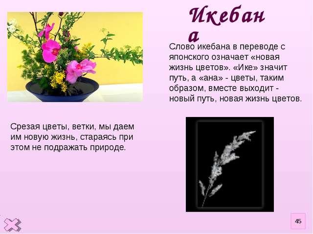 Срезая цветы, ветки, мы даем им новую жизнь, стараясь при этом не подражать п...