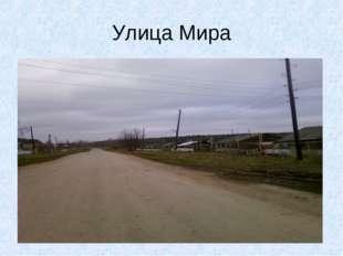 Улица Мира