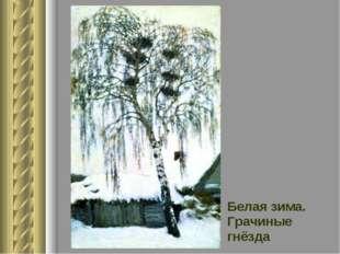 Белая зима. Грачиные гнёзда