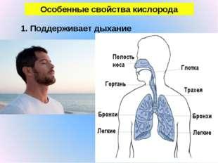 Особенные свойства кислорода 1. Поддерживает дыхание