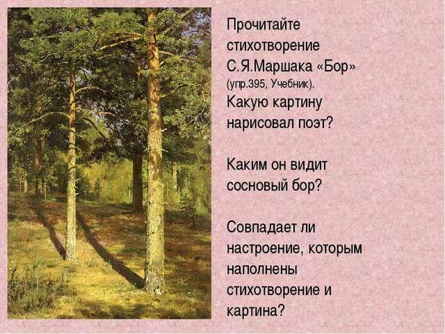 Прочитайте стихотворение С.Я.Маршака «Бор» (упр.395, Учебник). Какую картину...