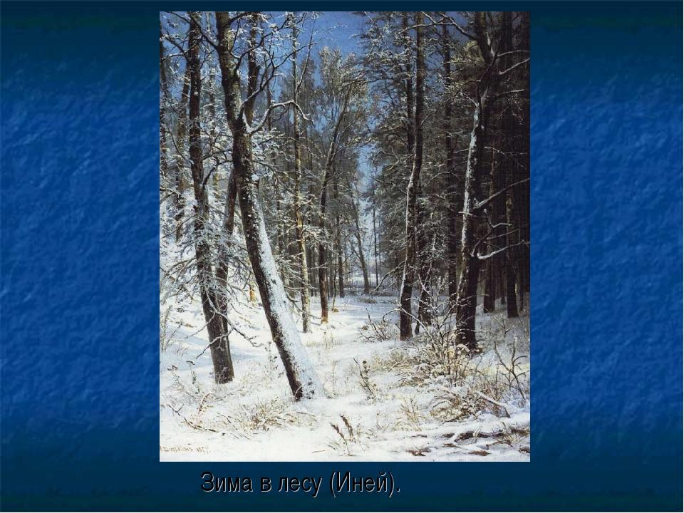 Зима в лесу (Иней).