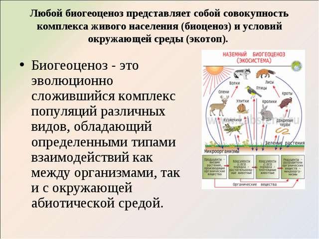 Любой биогеоценоз представляет собой совокупность комплекса живого населения...